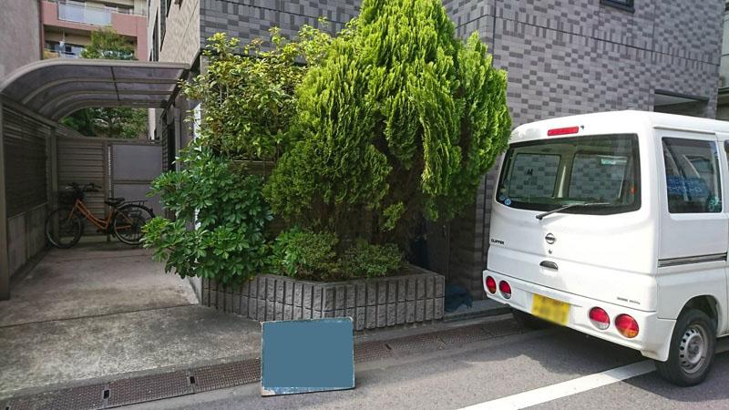 東京都大田区仲六郷にてマンション・植木・剪定の様子2
