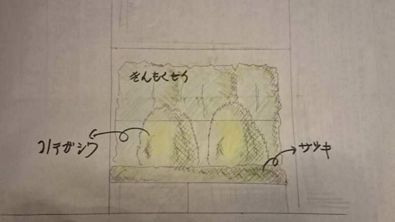 東京都大田区仲六郷にてマンション・植木・剪定の様子4