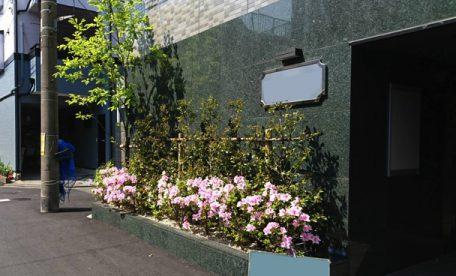 マンションの植栽・施工例・定期管理3