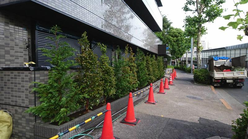 マンションの植栽工事