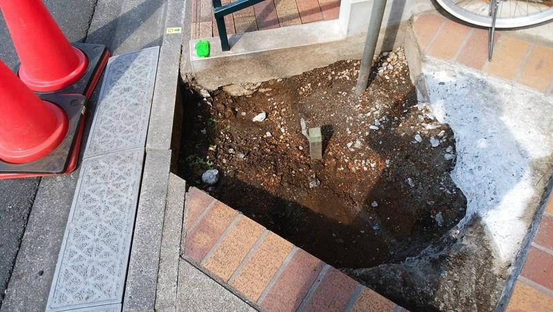 抜根後、掘削土壌を埋め戻した状態。