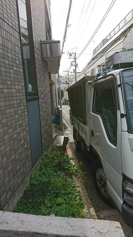 コニファー エレガンテシマの撤去・伐採/抜根